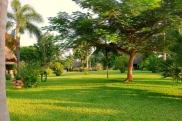 gazebo to gardens