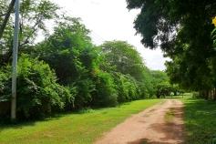 road outside1