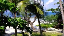 view of beach1