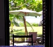 window to garden