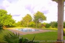 Pool from verandah