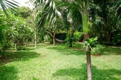 garden from gazebo