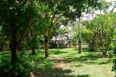 garden to gazebo