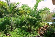gardens plush