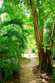 hse2 path