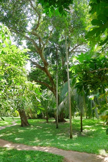 gardens 1st 2